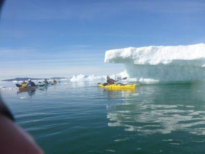 Don't drink Yellow Icebergs !!!!